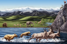 Artist Julie Selan's reconstruction of Zanda fauna from the Pliocene epoch. Image courtesy of Natural History Museum of Los Angeles County.