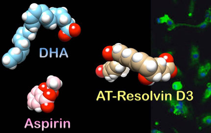 USC Dornsife Nicos Petasis and his team explored the structure of resolvin D3 to better understand why and how it works to shut off inflammation. Image courtesy of Nicos Petasis.