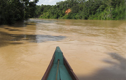 Down in the Amazonian floodplain, the rivers ran orange with rainforest soils, containing very fine particles called colloids, as well as entire tree trunks carried off by the high flows, said USC Dornsife's Sarah Feakins, referring to her recent research trip in Peru. Photo by Sarah Feakins.