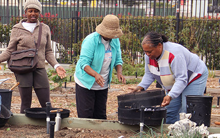 As part of the the Garden Gateway Nutrition Program (GGNP), residents of South Los Angeles prepare edible gardens at a local community garden. GGNP is one of many programs supported in part by the USC Good Neighbors Campaign. Photo by Zhiyi Feng.