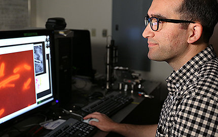 """I have never been happier about being wrong,"" said El-Naggar, corresponding author of a new study in the <em>Proceedings of the National Academy of Sciences</em> that shows the key feature in bacterial nanowires are not hair-like features, or pili. Photo by Matt Meindl."