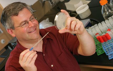 USC College associate professor of molecular biology Steven Finkel. Photo credit Philip Channing.
