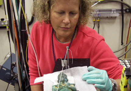 Lynn Swartz Dodd, curator of USC College's Archaeology Research Center, adjusts a bronze-gold figurine to be X-rayed at Argonne National Laboratory near Chicago during her and her students' first visit in July 2009. Dodd has been awarded a second grant to use the country's most powerful X-ray. Photo credit Elizabeth Friedman.