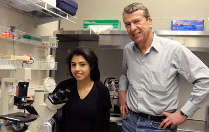Michel Baudry (right), professor of biological sciences and biomedical engineering, and neuroscience graduate student Sohila Zadran research the cellular-level chain of events behind the learning and memory process. Photo credit Laurie Moore.