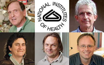 Biological Sciences faculty earn exceptionally high priority scores from the National Institutes of Health. Top row from left: Myron Goodman, Norman Arnheim. Bottom row, from left: Susan Forsburg, Sergey Nuzhdin and Frank Alber.