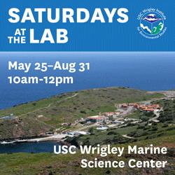 USC Wrigley Institute | Saturdays at the Lab > Wrigley > USC