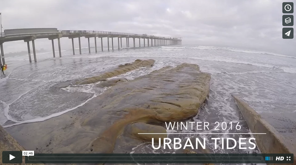 Urban Tides Community Science Initiative Usc Sea Grant Usc Dana